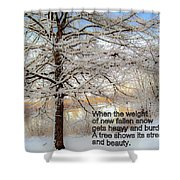 A Tree Shows Its Strength And Beauty Shower Curtain