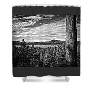 A Tree Stands Guard Over Big Bear Lake Shower Curtain