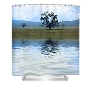 A Trees  Reflection Shower Curtain
