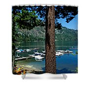 A Trees View Of Fallen Leaf Lake Shower Curtain
