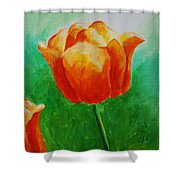 A Tulip For Jolee Shower Curtain