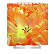 A Tulip Fully Open Shower Curtain