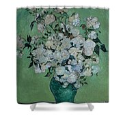 A Vase Of Roses Shower Curtain