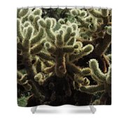 A Very Prickly Situation  Shower Curtain