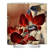 A Vibrant View Shower Curtain