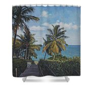 A View In The Virgin Islands Shower Curtain