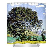A View Of Lake Brienz From Bodeli Shower Curtain