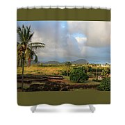 A View Of Prince Kuhio Park Shower Curtain
