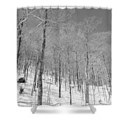 A View Through The Woods Shower Curtain
