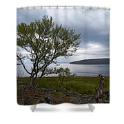 A View To The Arctic Sea Shower Curtain