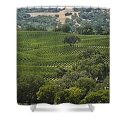 A Vineyard In The Anderson Valley Shower Curtain