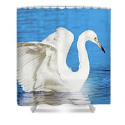 A Vision In White Shower Curtain