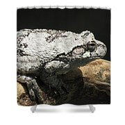 A Visitor Shower Curtain