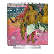 A Walk By The Sea Shower Curtain