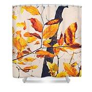 A Walk In Fall Shower Curtain