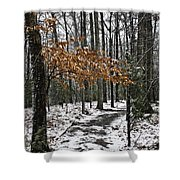 A Walk In The Snow Quantico National Cemetery Shower Curtain