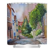 A Walk In The Village Shower Curtain