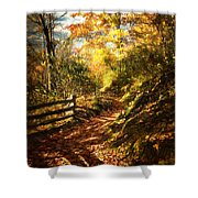 The Lighted Path Shower Curtain