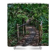 A Walk Through The Forest Shower Curtain