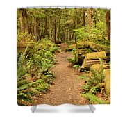 A Walk Through The Rainforest Shower Curtain