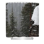 A Walk Through Winter Shower Curtain