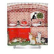 A Warm Place Shower Curtain