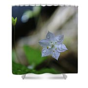 A Washed Flower Shower Curtain
