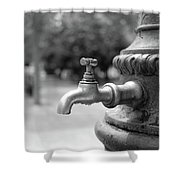 A Water Tap In The Park Shower Curtain