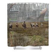 A Way Of Life. Shower Curtain