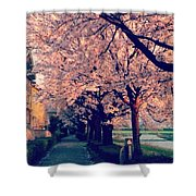 A Way Under The Cherry Blossom Shower Curtain