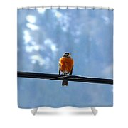 A Welcome Sign Shower Curtain