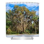 A Well Dressed Oak Shower Curtain