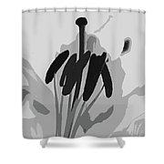 A Whisper-d Shower Curtain