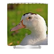 A White Duck, Side View Shower Curtain