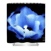 A White Hibiscus Bloom With Blue Tinge On Black Background Shower Curtain