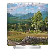 A  White Mountain View Shower Curtain