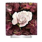 A White Rose Shower Curtain