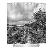 A Winter Track Shower Curtain