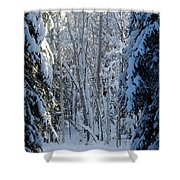 A Winter View  Shower Curtain