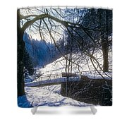 A Winter Walk In The Black Forest Shower Curtain