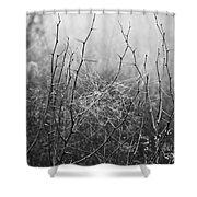 A Winter Web Shower Curtain