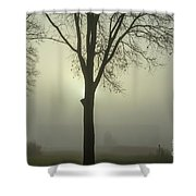 A Winter's Day In The Fog Shower Curtain