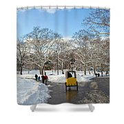 A Winter's Day Shower Curtain