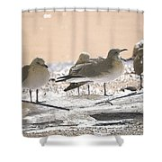 A Winter's Day Passing Bye Shower Curtain
