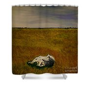 A Wolf Story Shower Curtain