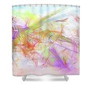 A Wonderful Dream Shower Curtain