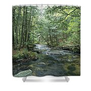 A Woodland View With A Rushing Brook Shower Curtain