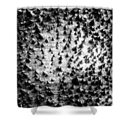 A World Of Thorns Shower Curtain