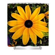 A Yellow Beauty Shower Curtain