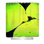 A Yellow Bud Of Waterlily Shower Curtain
